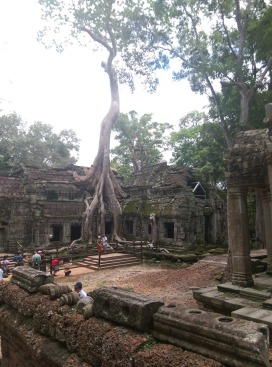 Ta Prohm - used in the film Tomb Raider